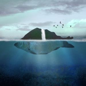 """""""Τι είναι η αλληγορία"""": Για το κείμενό μας επιλέξαμε μια εικόνα αλληγορική, η οποία απεικονίζει ένα ψάρι που έχει τη μορφή παγόβουνου. Άλλο πάνω από τη μέση και πάνω και διαφορετικό από κάτω."""