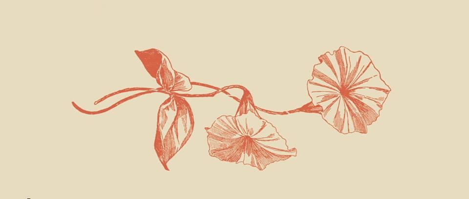 Τα δύο εὖ της ευτυχίας: Παραθέτουμε την εικόνα από το εξώφυλλο του βιβλίου του Παύλου Κόντου. Το Φιλολογικό Φροντοστήριο θα παρεβρεθεί στην παρουσίαση που λάβει χώρα στο ίδρυμα Αικατερίνης Λασκαρίδη στον Πειραιά στις 26 Σεπτεμβρίου.. Το εξώφυλλο απεικονίζει σε απαλά χρώματα ώχρας ένα άνθος που αναπτύσσεται.