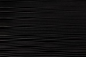 Μια άλλη ανάγνωση του ιδεατού (κατά Βέμπερ) τύπου της γραφειοκρατίας: Επιλέξαμε ένα μαύρο φόντο με λευκές οριζόντιες γραμμές για να αποδώσουμε τον λαβύρινθο της σύγχρονης γραφειοκρατίας.